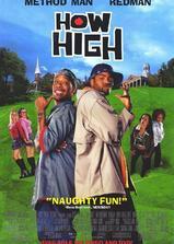 High到哈佛海报