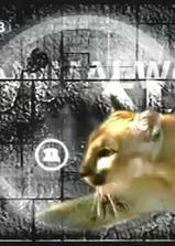 动物世界海报