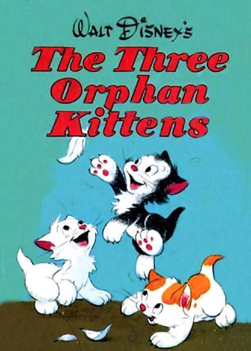 三只孤儿猫