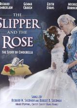 水晶鞋与玫瑰花海报