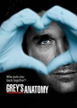 实习医生格蕾 第九季海报