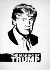川普是怎样炼成的海报