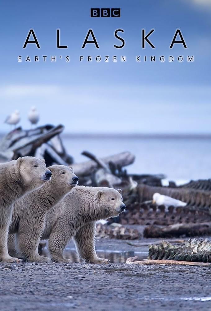 阿拉斯加:地球上的冰冻王国