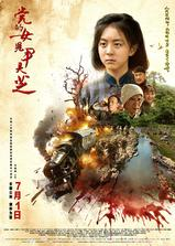 党的女儿尹灵芝海报
