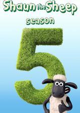 小羊肖恩 第五季海报