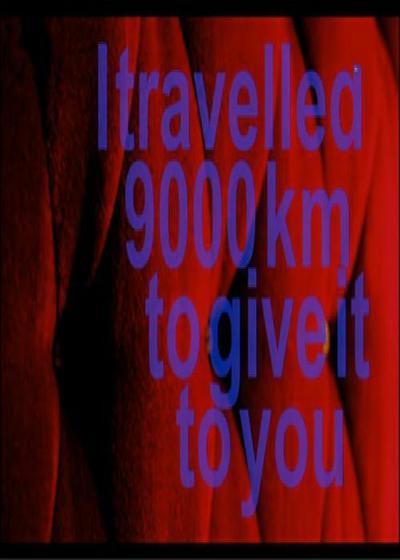 穿越九千公里献给你海报