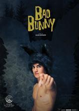 坏兔兔海报