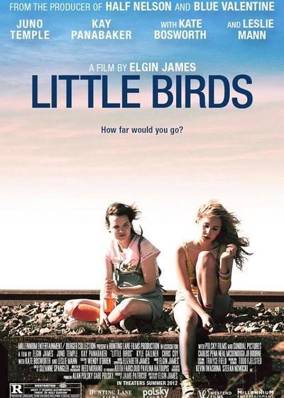 我们是一群小小鸟海报