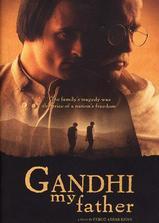 我的父亲甘地海报