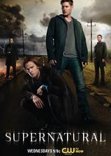 邪恶力量 第八季海报