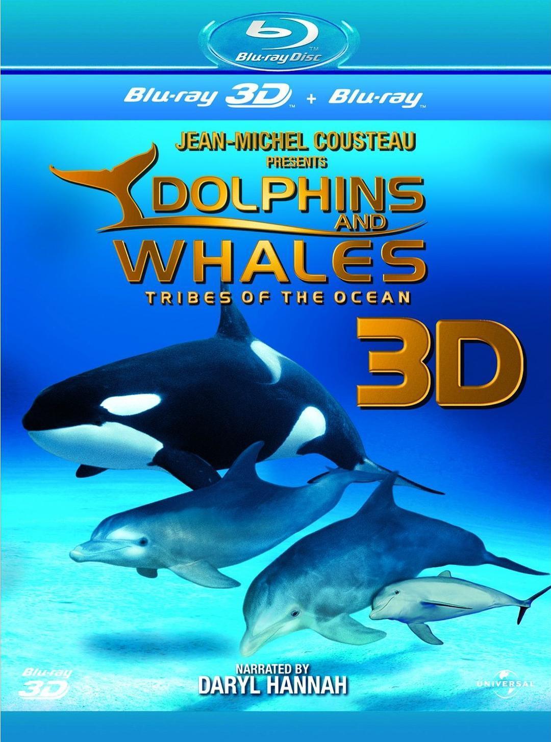 海豚和鲸鱼 3D