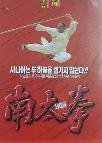 南拳王海报