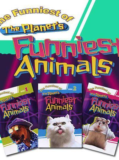 动物星球之世上最搞笑动物录像集锦海报