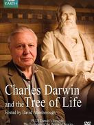 达尔文和生命之树