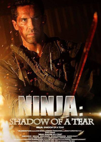 忍者2:撕裂的暗影海报