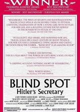 希特勒的秘书海报
