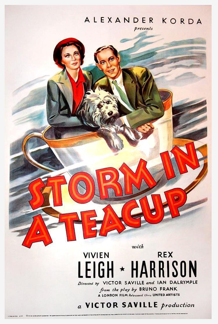 茶杯里的风暴