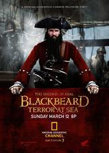 绿林好汉海盗船长黑胡子海报