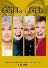 黄金女郎 第一季海报