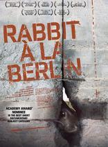 柏林墙的野兔