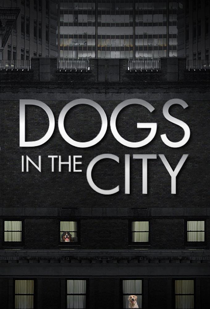 狗在都市 第一季