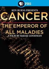 癌症:众疾之皇海报