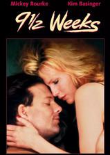 爱你九周半海报