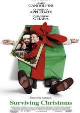 谁来陪我过圣诞海报