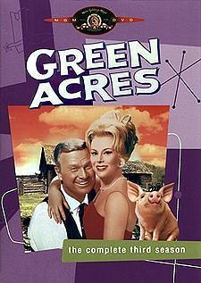 绿色的田野海报