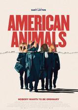 美国动物海报