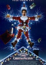 疯狂圣诞假期海报