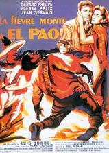 帕欧的火山海报