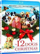 12条圣诞狗狗