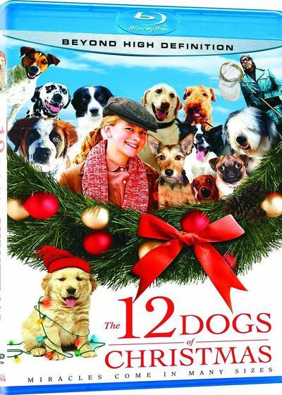 12条圣诞狗狗海报