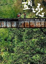 五月之恋海报