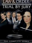 法律与秩序:陪审团
