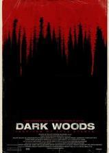 黑暗的森林海报