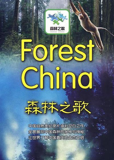 森林之歌海报
