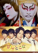 歌舞伎华之恋海报