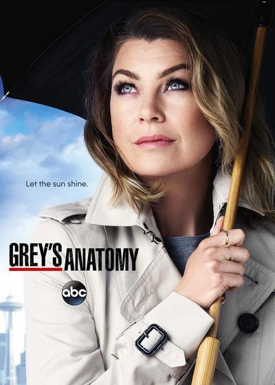 实习医生格蕾 第十二季海报
