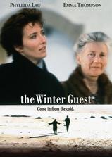 冬天的访客海报