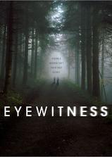 目击证人海报