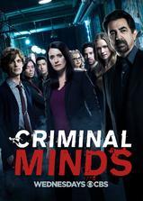 犯罪心理 第十三季海报
