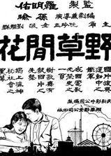 野草闲花海报