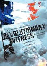 革命见证人海报