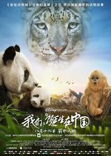 我们诞生在中国海报