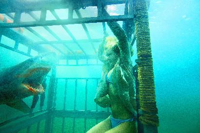 少女花样作死,《鲨海逃生》探秘水底惊险世界!