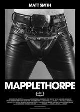 梅普尔索普海报