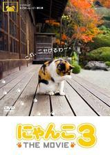 猫咪物语3海报