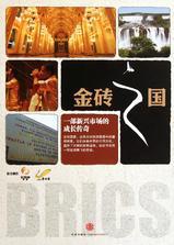 金砖之国海报